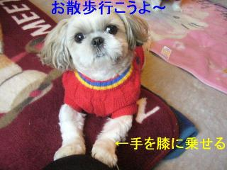 mint_20061118_3