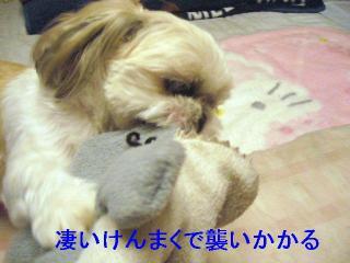 mint_20061122_7