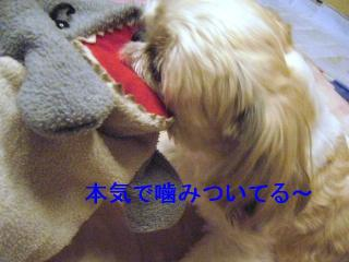 mint_20061122_5