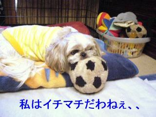 love_20061127_1