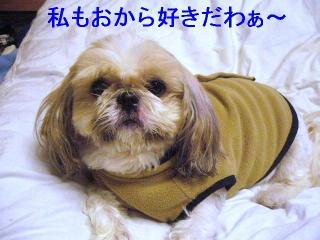 bibi_20061127_1