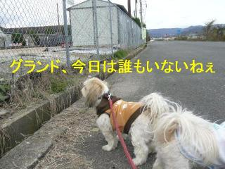 bibi_20061203_1