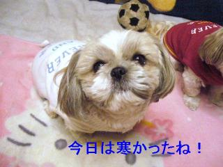 love_20061204_1