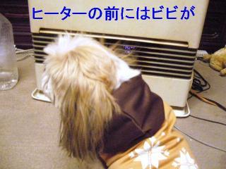 bibi_20061204_1