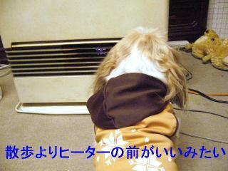 bibi_20061204_2