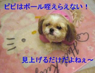 bibi_20061211_1