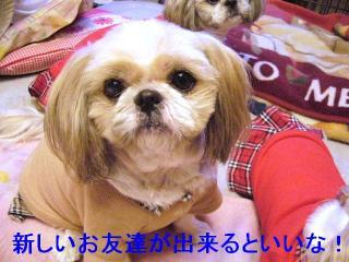 bibi_20070102_1
