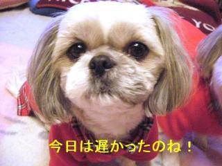 love_20070111_1