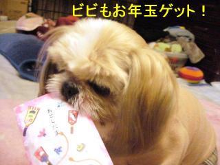 bibi_20070104_1