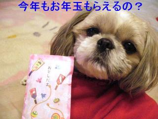 love_20070104_1
