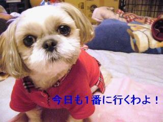 mint_20070105_1