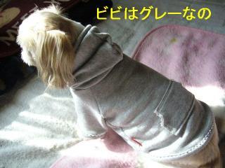 bibi_20070109_1