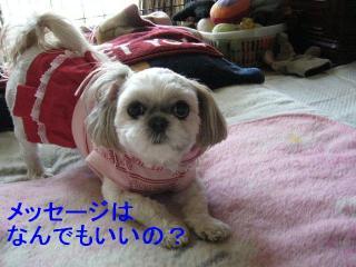mint_20070108_1