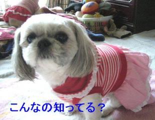 love_20070108_1