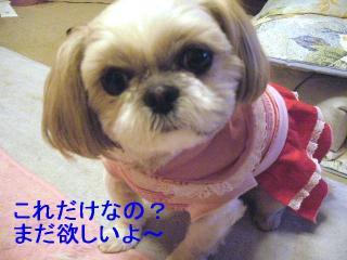 mint_20070112_1
