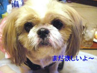 bibi_20070112_2