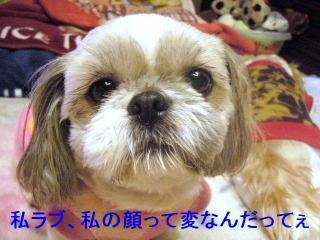love_20070115_1