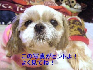love_20070115_3