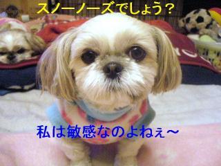 mint_20070116_2