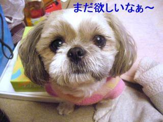 love_20070117_3