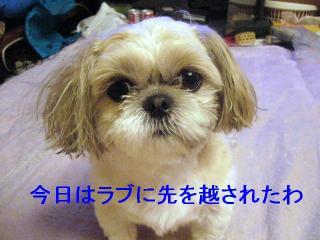 mint_20070119_2
