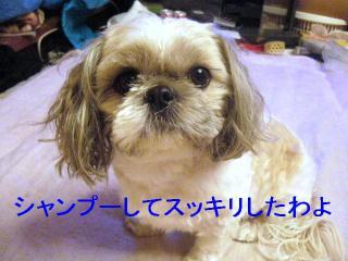love_20070119_1