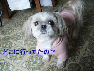 mint_20070121_1