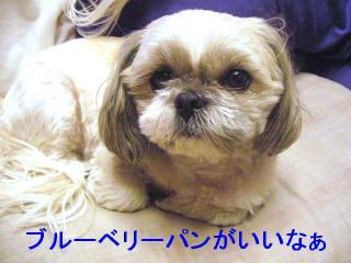love_20070124_1