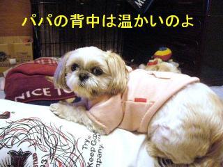 mint_20070124_1