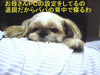 love_20070125_1