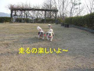 oyako_20070204_1