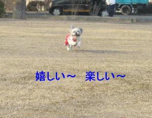 love_20070204_3