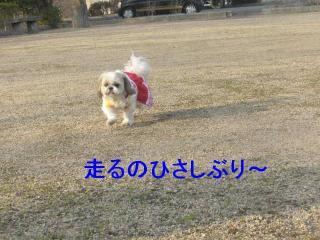 bibi_20070204_2