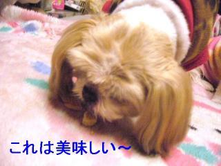 bibi_20070223_1