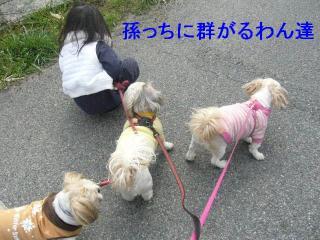 oyako_20070303_1