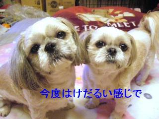 lovemint_20070305_2