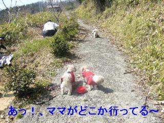 oyako_20070321_1