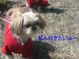 mint_20070321_1