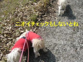 oyako_20070321_3