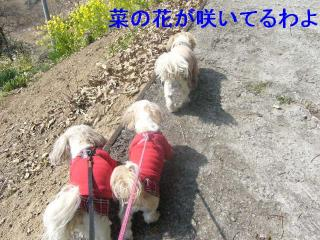 oyako_20070321_4