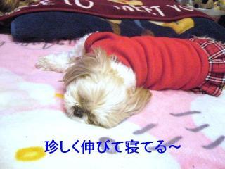 mint_20070324_1