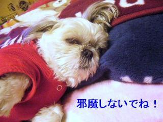 mint_20070324_4