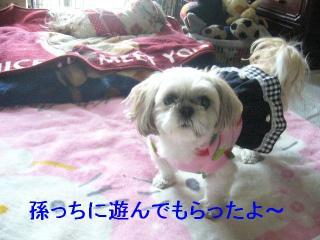 mint_20070331_1