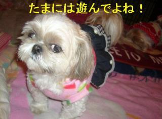 mint_20070405_3