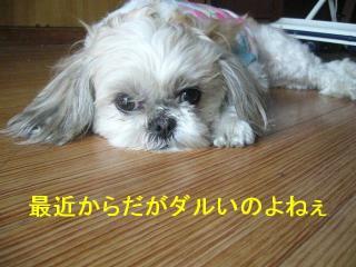 mint_20070407_3