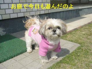 mint_20070415_3