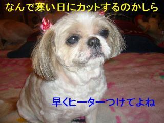 bibi_20070416_2