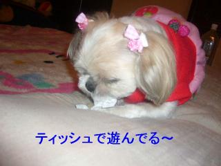 mint_20070418_1