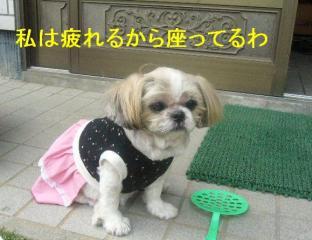 bibi_20070421_1