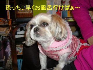 mint_20070424_2
